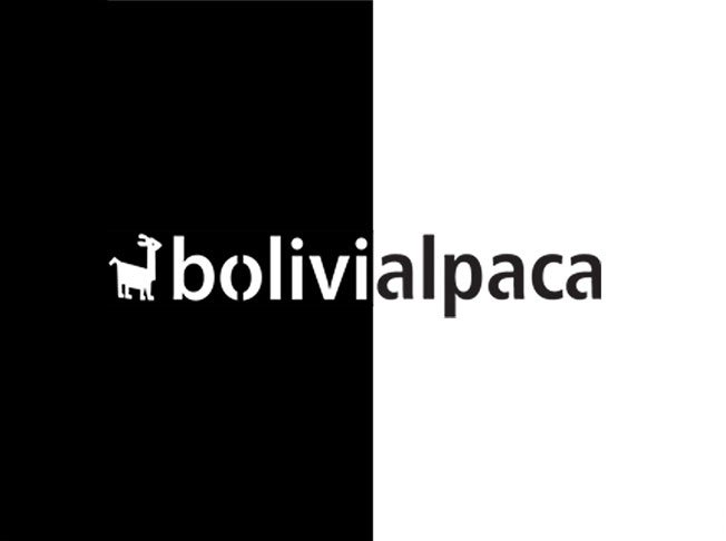 bolivialpaca-s
